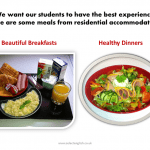We want our students to have the best meals and experience